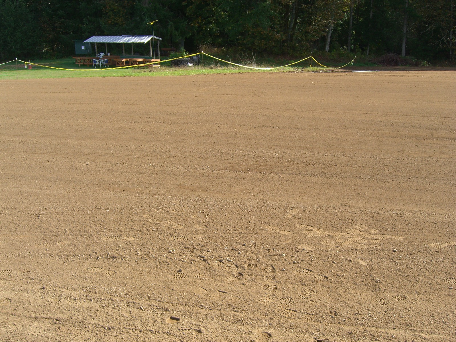 Runway is seeded